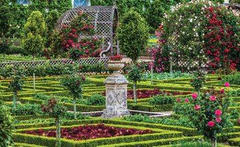Kuvatapetti, TapettijulisteRose Garden