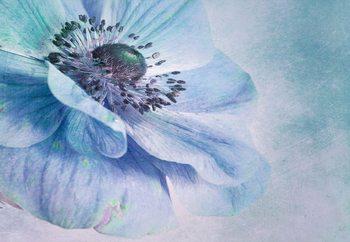 Shades Of Blue Valokuvatapetti