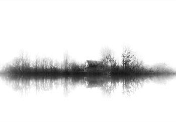 Silence Valokuvatapetti