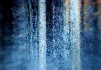 The Forest Valokuvatapetti