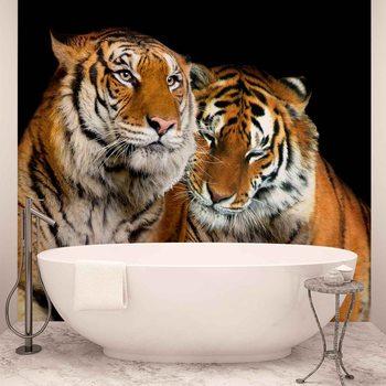 Tigers Valokuvatapetti