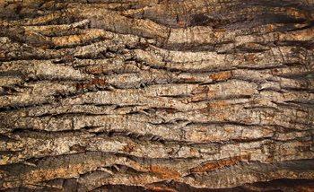 Tree Bark Valokuvatapetti