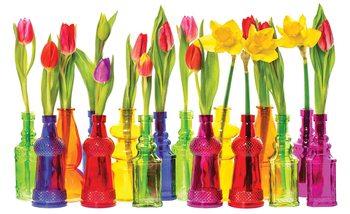 Tulips in Bottles Valokuvatapetti