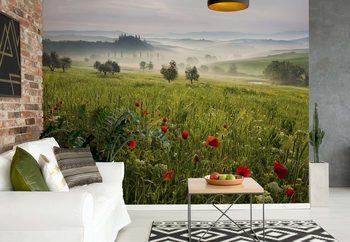 Tuscan Spring Valokuvatapetti