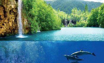 Waterfall Sea Nature Dolphins Valokuvatapetti