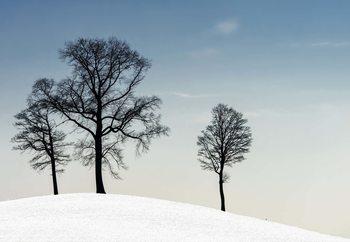 Winter Haiku Valokuvatapetti