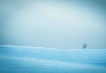 Winter In Solitude Valokuvatapetti