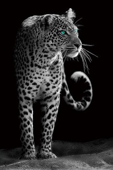 Lasitaulu Gepard - Black and White