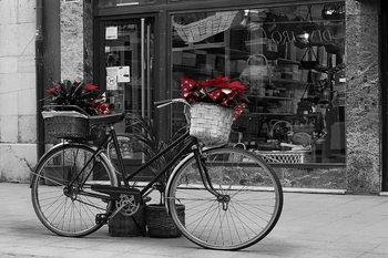 Lasitaulu  Old Bicycle - Red Flowers