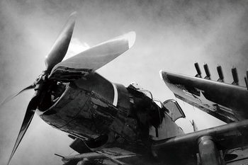 Lasitaulu Plane - Black and White Screw