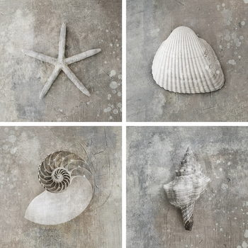 Lasitaulu Sea - White Collage