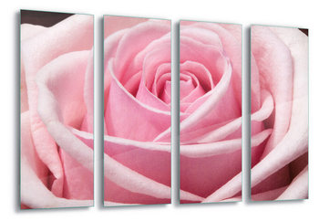 Lasitaulu The Sensual Rose