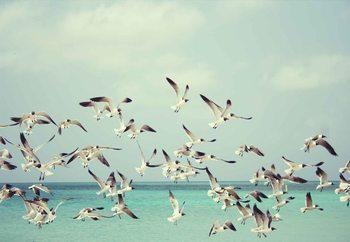 Lasitaulu  Vintage Seagulls
