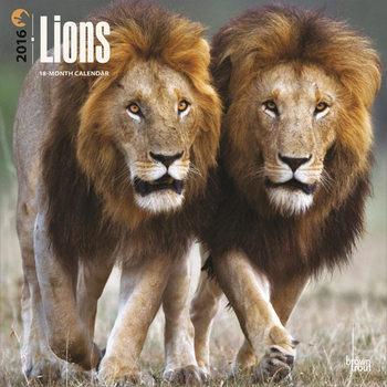 Calendar 2022 Lions