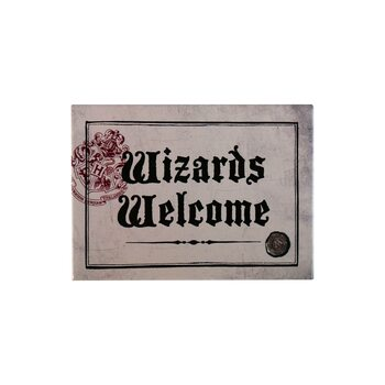 Harry Potter - Wizards Welcome Magneetti