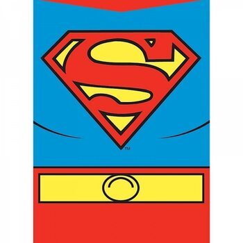 Superman - Costume Magneetti