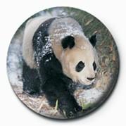 Merkit PANDA