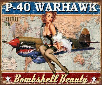 Metal sign P-40 Warhawk