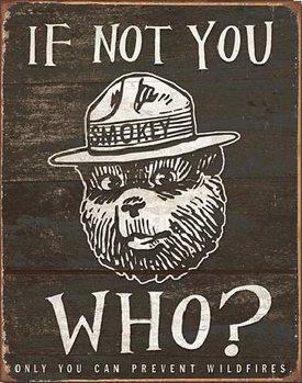 Metal sign SMOKEY BEAR - If Not You