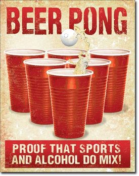 Beer Pong Metal Sign