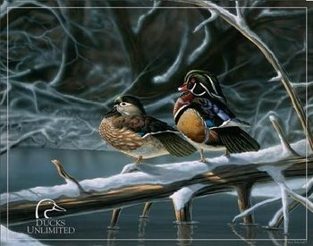 DUCK UNLIMITED - interlude Metal Sign