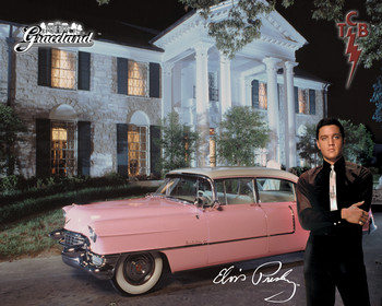 ELVIS PRESLEY - and his cadillac Metal Sign