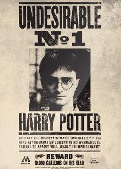 Harry Potter - Undesirable No.1 Metal Sign