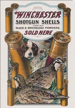 WIN - dog & quail Metal Sign