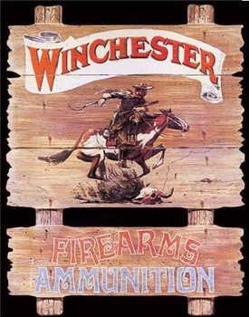 WIN - express rider Metal Sign