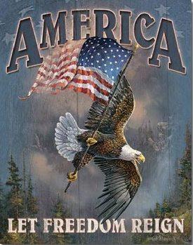 Metallikyltti AMERICA - let freedom reign