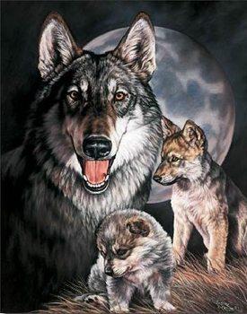 Metalllilaatta GRAHAM - Wolf Experience