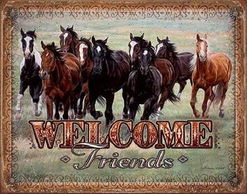 Metalllilaatta  WELCOME - HORSES - Friends