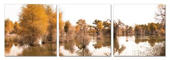 Autumn Landscape at the lake Mounted Art Print