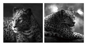 Beast hidden in gray Mounted Art Print