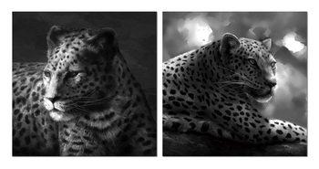 Beast hidden in gray Mounted Art Print