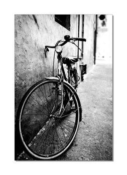 Bike (B&W) Mounted Art Print