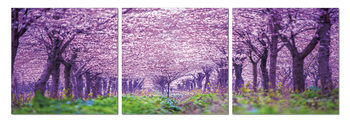 Blossoming orchard Mounted Art Print