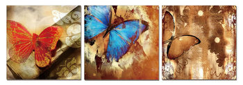 Butterfly - Art of Nature Mounted Art Print