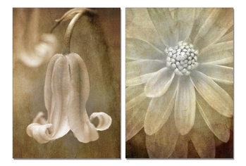 Flower painting Mounted Art Print