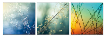LANDSCAPE - Colored grass Mounted Art Print