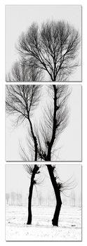 Modern design - black and white tree Mounted Art Print