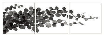 Modern Design - Young Branches (B&W) Mounted Art Print
