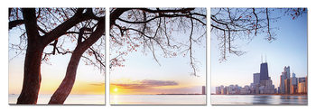 Silhouette of a tree at sunset Mounted Art Print