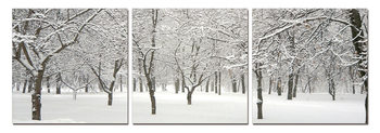 Snowy winter sets Mounted Art Print