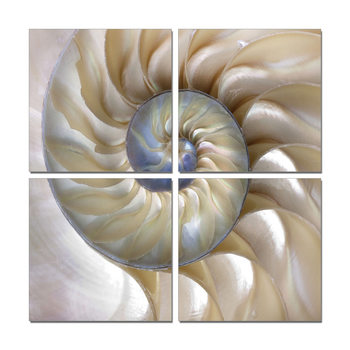 Spiral staircase Mounted Art Print