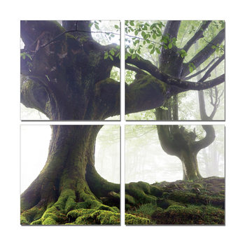 Spreading tree Mounted Art Print