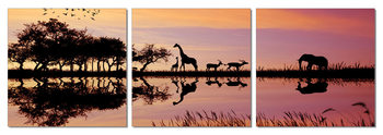 Sunrise in Africa Mounted Art Print