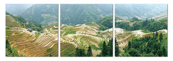Terraced plantations Mounted Art Print