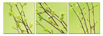 Twigs on green canvas Mounted Art Print