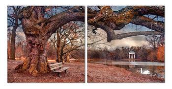 Walk autumn park Mounted Art Print